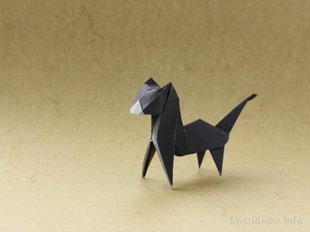 Cat by Tetsuya Gotani