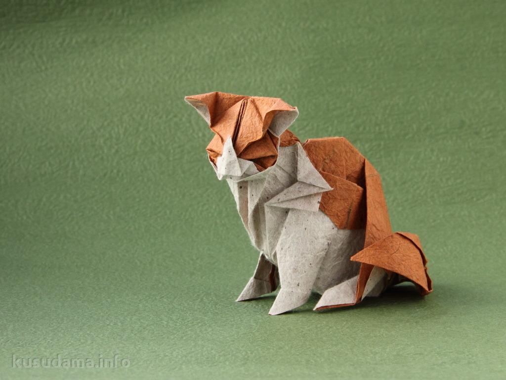 Cat by Katsuta Kyohei
