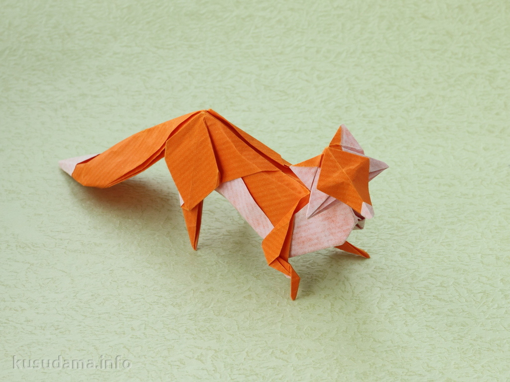 Fox by Hoang Tien Quyet