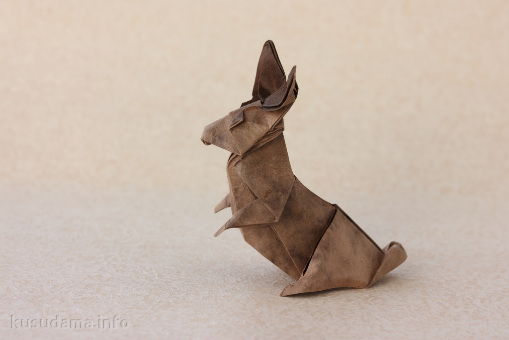 Bunny by Kunsulu Jilkishiyeva