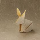 Rabbit by Fumiaki Kawahata