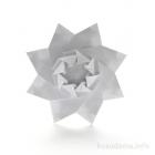 Iris Star (variation)