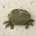 Shore Crab by Pham Hoang Tuan